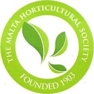 logo the malta
